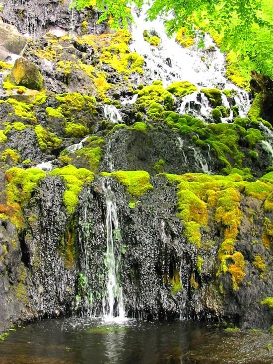 オンネトー湯の滝『微生物によるマンガン酸化物生成地Ⅱ』国の天然記念物