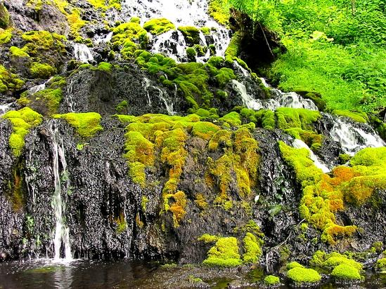 オンネトー湯の滝 地上でできるマンガン鉱物の生成が観測できる場所として世界的に貴重